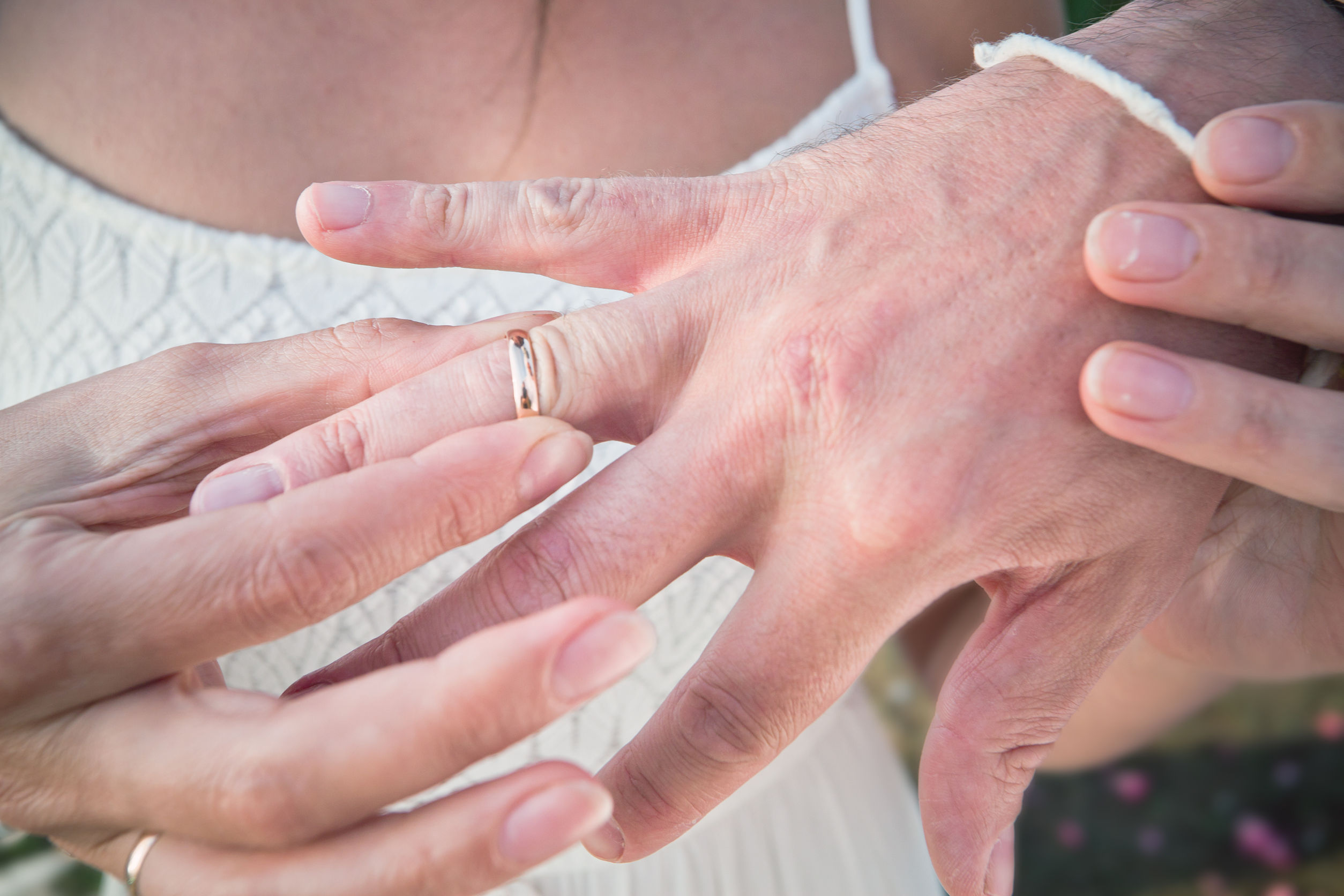 40528552 - wedding rings on hands of the newlyweds